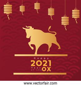 chinese new year poster with golden ox and lamps hanging