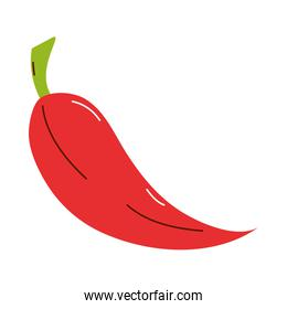 chilli fresh vegetable isolated icon