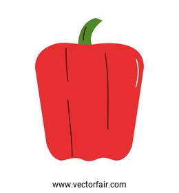 red pepper vegetable icon vector design