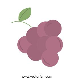 grapes fruit with leaf icon