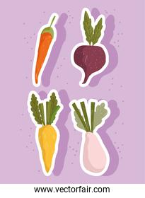vegetables fresh food carrots onion and beetroot icon set