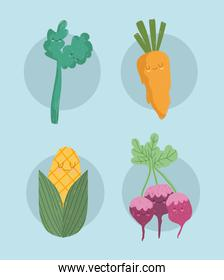 cartoon vegetables carrot celery beetroot and corn icons