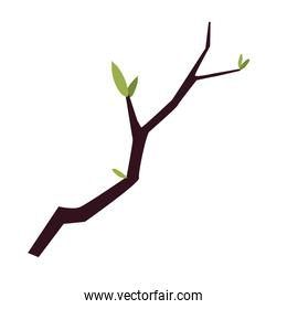 branch tree leaves foliage cartoon, icon isolated image