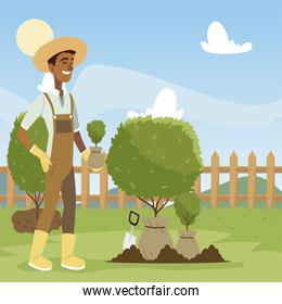 gardening, man with shovel working in the garden and digs ground