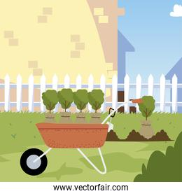 gardening, plants with bag on wheelbarrow for planting in yard