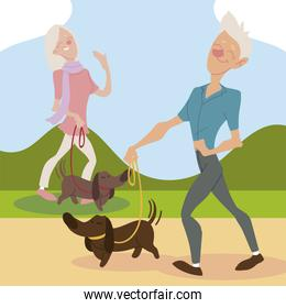 seniors active, old man and woman walking with dogs