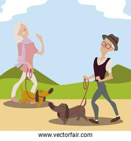 seniors active, old man and elderly woman walking with dogs