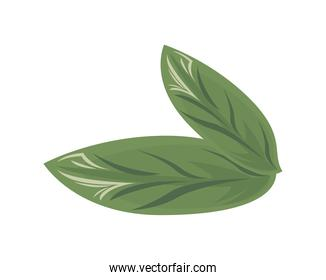ecology leafs plant green nature icons