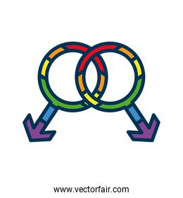 genders symbol with lgtbi flag flat style icon