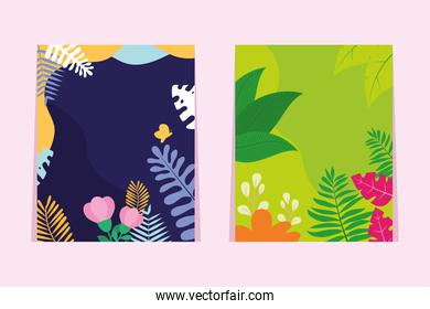 colorful backgrounds for stories with tropical leaves design