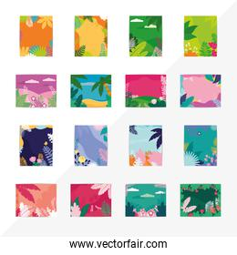 colorful tropical backgrounds set over white background