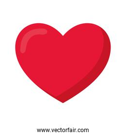 heart on a white background