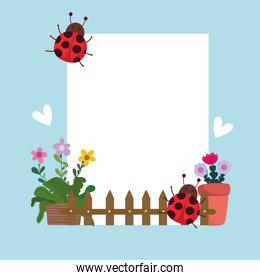 Gardening cute plants in pot fence and ladybirds banner