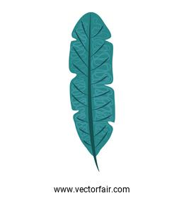 tropical leaf foliage flora nature abstract style icon