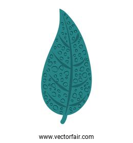 tropical leaf foliage natural decoration abstract style icon