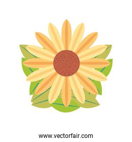 flower leaves nature in cartoon style white background