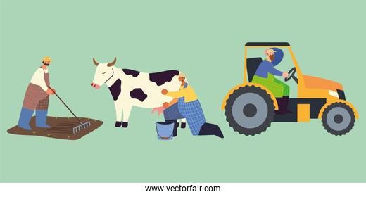 farm and agriculture farmer with tractor cow and planting work
