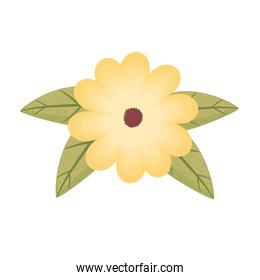yellow flower and leafs color decoration