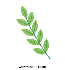 branch with leafs ecology nature icon
