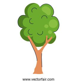 tree plant forest nature isolated icon