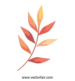 autumn branch with leafs plant foliage icon