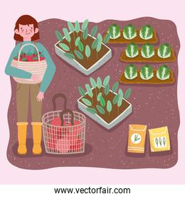 farmer boy holds basket with tomatoes plantation cabbage and seeds