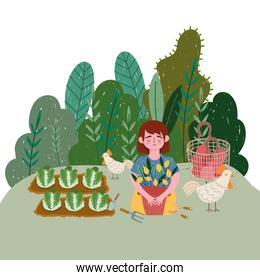 girl with chicken plants lemon cabbage plantation and tomatoes