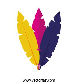 colorful feathers icon, colorful design