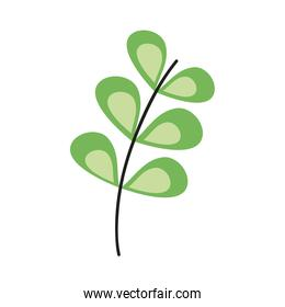 green branch with leafs plant decorative icon