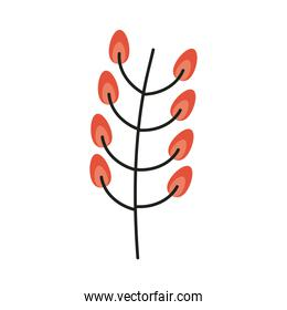 branch with seeds nature icon