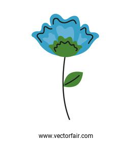 beautiful blue flower and leafs garden decoration