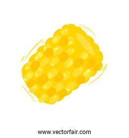 pineapple fruit isolated vector design