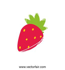 strawberry fruit isolated vector design