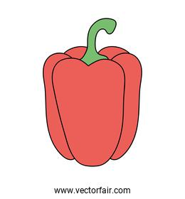 pepper vegetable icon, flat style