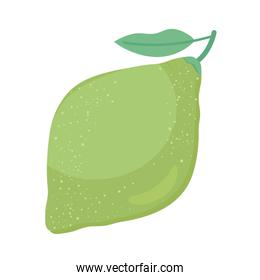 sweet guava fruit nutritive icon
