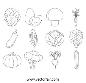 icon set of vegetables, line style