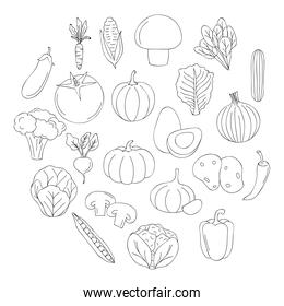 healthy vegetables icons around, line style