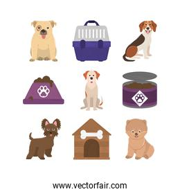 pets, dogs canned food bowl cage and house icons