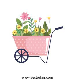 beautiful flowers garden in wheelbarrow