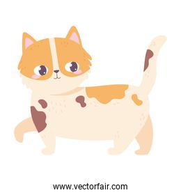 spotted cat cartoon pet white background