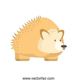 hedgehog jungle animal in cartoon abstract design