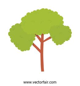 icon of green tree, colorful design