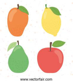 icon set of healthy fruits, flat style