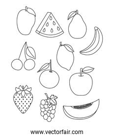 tropical fruits icon set, line style