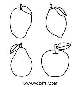icon set of healthy fruits, line style