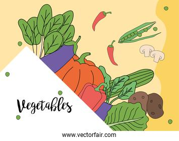 vegetables icon group vector design