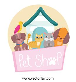 pet shop with dog cat bird and hamster
