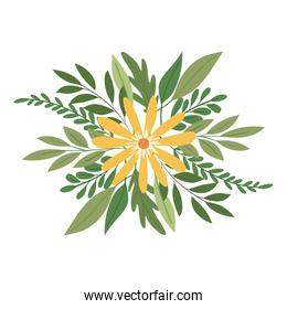 flower with a yellow color over a white background