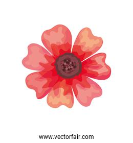 beautiful red flower decorative icon