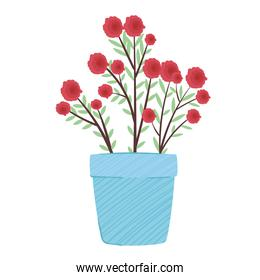 red flowers plant in blue ceramic pot spring season icon
